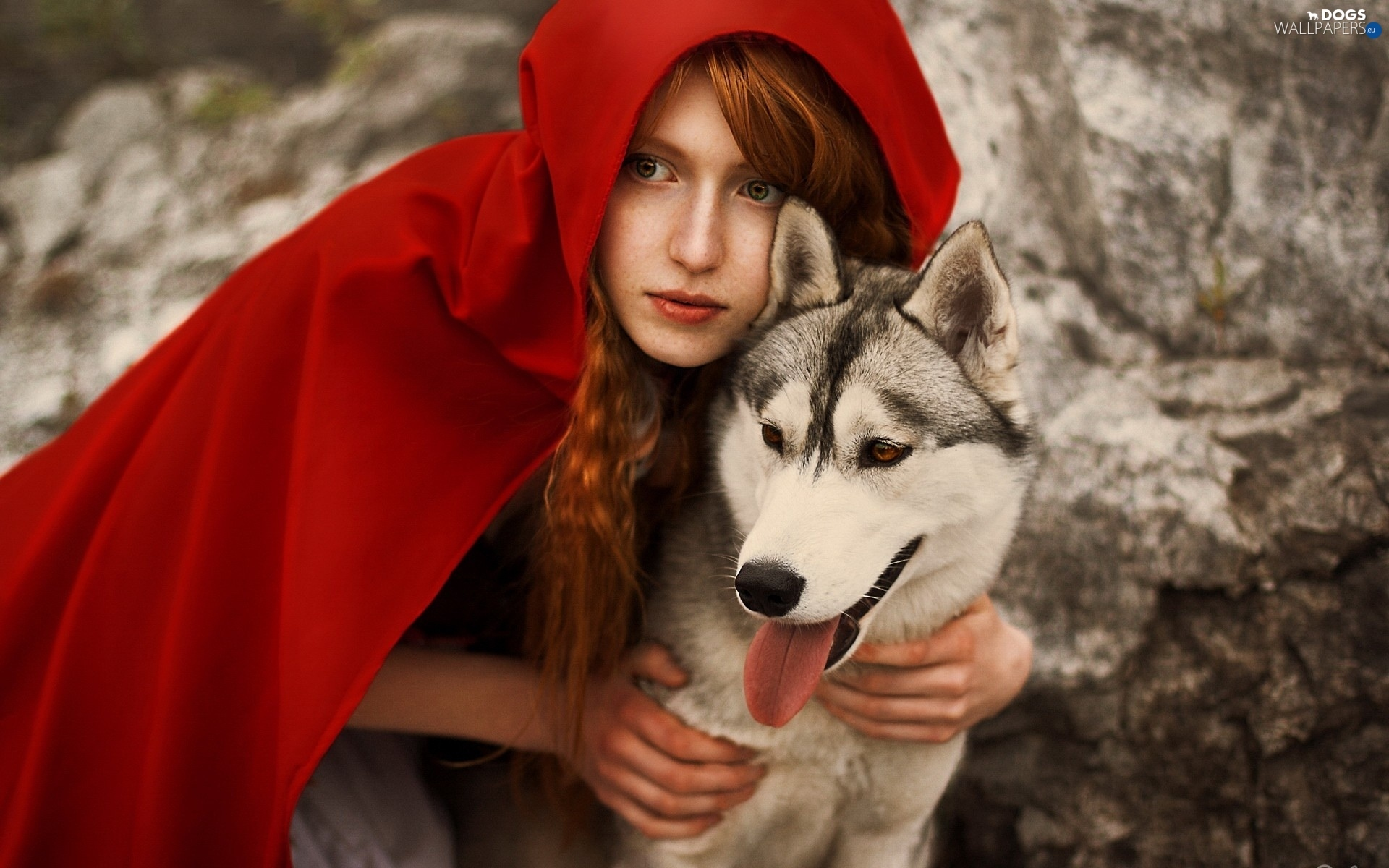 dog, cape, Women, Husky, red hot - Dogs wallpapers: 1920x1200