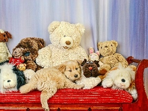 plushies, toys, dog, Puppy
